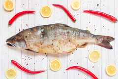 Raw pink salmon fish with spices, lemon and chili pepper on a light table.  stock photos