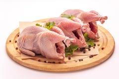 Raw plucked quail isolated on white background