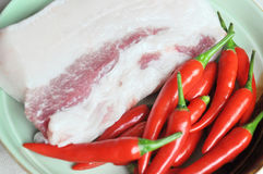 Raw pork and chilli Royalty Free Stock Photos