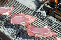 Raw pork chops Royalty Free Stock Image