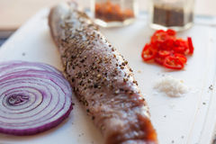 Raw pork fillet with freshly ground pepper and red onion Royalty Free Stock Photography