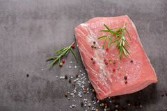 Raw pork loin with spices. And empty space for text Stock Image