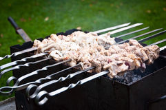 Raw Pork Meat on Grill Royalty Free Stock Images