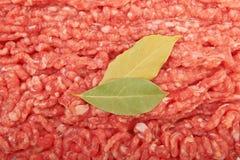 Raw pork meat. Ground beef with bay leaf Stock Photos