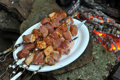 Raw pork meat at skewers Stock Photos
