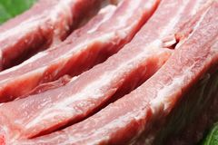 Raw pork ribs. And vegetables Royalty Free Stock Images