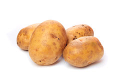 Raw potato Royalty Free Stock Image