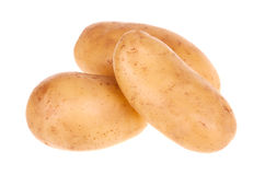 Raw Potato Royalty Free Stock Images