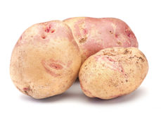 Raw potato Stock Image