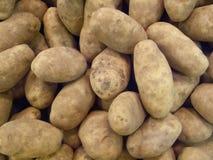 Raw potato. Fresh raw potato pattern background Royalty Free Stock Photo