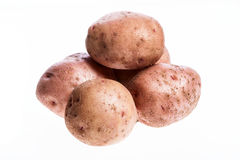 Raw potato Stock Image