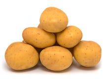 Raw Potato royalty free stock photo