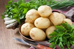 Raw fresh new potato. Raw potato in copper tray with green onions and parsley on wooden background Stock Photos
