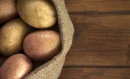 Harvest potatoes in burlap sack on wooden background Stock Image