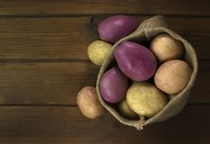 Harvest potatoes in burlap sack on wooden background Royalty Free Stock Images