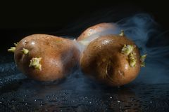 Raw potato food . Fresh potatoes in an old sack on wooden background. Free place for text. Top view Stock Image