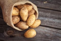 Raw potato food . Fresh potatoes in an old sack on wooden background. Top view Royalty Free Stock Image