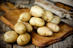 Raw potato food. Fresh young potatoes in old rustic wooden backg Stock Photos