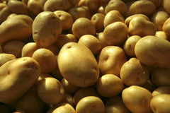 Raw potato heap Royalty Free Stock Photos