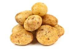 Raw potato Royalty Free Stock Photography