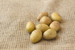 Raw Potato. Es on the sackcloth Stock Photo