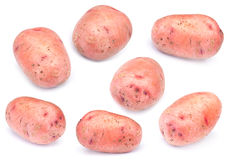 Raw potato set Stock Images