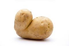 Raw potato. On white background Royalty Free Stock Photos
