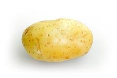 Raw potato on white texture Stock Photography