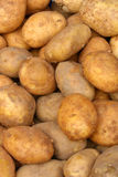 Raw potatoes. Pile of raw potatoes on display in market Royalty Free Stock Photography