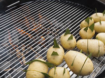 Raw potatoes on the barbecue grill. Raw potatoes, carved and seasoned with bay leaves in cooking on the barbecue grill Stock Photography