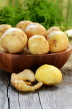 Raw potatoes in bowl Royalty Free Stock Photo
