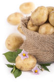 Raw potatoes Stock Photo