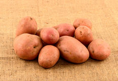 Raw potatoes on burlap sack Royalty Free Stock Image