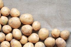 Raw Potatoes On Canvas Royalty Free Stock Images