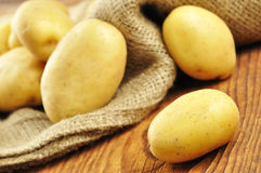 Raw potatoes in jute sack, selective focus Royalty Free Stock Photo