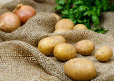 Raw potatoes. On the old rag bag with onion and parsley in background Stock Photography