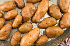 Raw potatoes in a pan Royalty Free Stock Photography