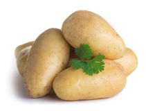 Raw potatoes with parsley Stock Image