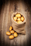 Raw potatoes in the sack Royalty Free Stock Images