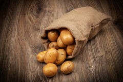 Raw potatoes in the sack Royalty Free Stock Image