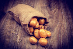 Raw potatoes in the sack Stock Photos