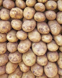 Raw potatoes for sale Stock Photo
