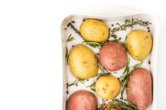 Raw potatoes with spices and herbs in the backing dish Royalty Free Stock Photos