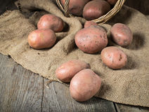 Raw potatoes on wooden background. Raw organic potatoes on wooden background Stock Photo