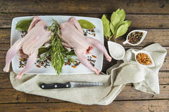 Raw poussin with herbs and spices Stock Photos