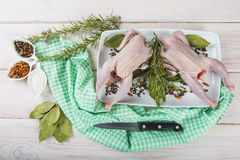 Raw poussin with herbs and spices Royalty Free Stock Photos