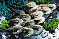 Raw prawn Stock Photo