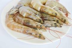 Raw prawn on dish in white background. Raw prawn on dish in the white background Stock Photo