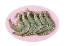 Raw prawn on plate. Top view raw prawn on plate isolated on white background Royalty Free Stock Photography