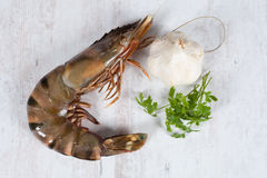 Raw prawns Royalty Free Stock Photos